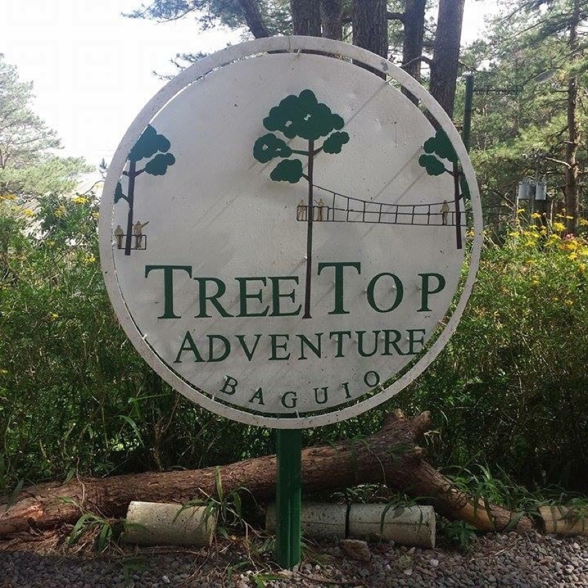 Baguio Tree Top
